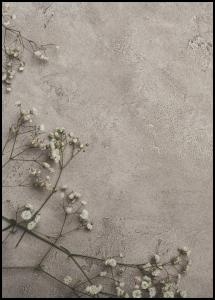 Stone Flowers Poster