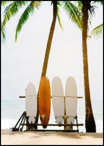Surf Boards Poster