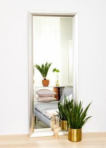 Miroir Hotagen Argent 60x150 cm
